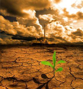 14890133 - cracked pollution ground
