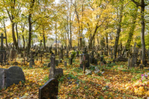 33228431 - autumn in old cemetery